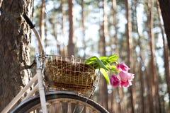 Altes Fahrrad mit Blumen im Korb, das Holz Stockfotografie
