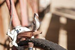 Altes Fahrraddetail Lizenzfreie Stockfotos