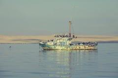 Altes Fischerboot gefüllt mit Pelikanen Stockfoto