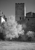 Altes französisches Dorf. Das Infrarotbild. Stockbild