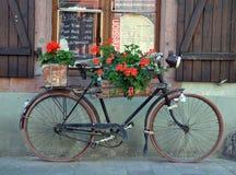 Altes französisches Fahrrad Lizenzfreies Stockbild