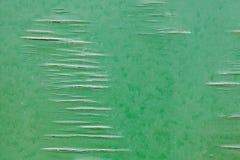 Altes Furnier-Blatt, grüne Farbe über gebrochenem Sperrholz Stockbild