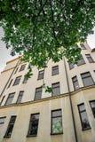 Altes gelbes Gebäude mit grünem Blatt Stockbilder