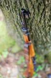 Altes Gewehr Stockfotos