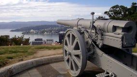 Altes Gewehr-botanische Gärten Wellington Lizenzfreies Stockfoto