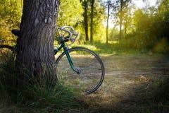 Altes grünes Sportfahrrad im Wald Lizenzfreie Stockfotos