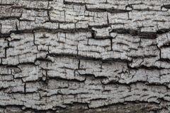 Altes graues Holz Stockfotografie