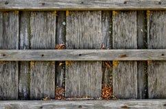 Altes hölzernes Brett umfasst mit Pilz Stockfoto