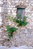 Altes hölzernes Fenster in der Steinwand in der Weinleseart Stockbilder