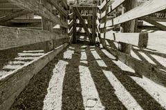 Altes hölzernes Vieh transportiert auf eine Ranch auf einer Rutschbahn Lizenzfreies Stockfoto