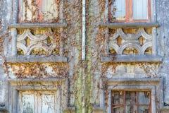Altes Haus Abandonded mit Anlagen Lizenzfreie Stockbilder