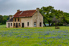 Altes Haus Abandonded in Texas Wildflowers Stockfotografie