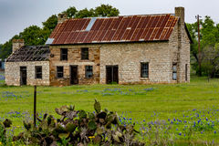 Altes Haus Abandonded in Texas Wildflowers Lizenzfreies Stockfoto