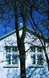 Altes Haus, alter Baum Stockbild