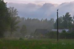 Altes Haus im Wald lizenzfreie stockbilder