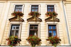 Altes Haus in Krakau Stockfoto