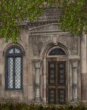 Altes Haus mit Reben Stockfoto