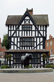 Altes Haus-Museum u. Statue von einem Hereford Stier, Hereford, Hereford Lizenzfreies Stockfoto