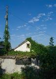 Altes Haus twined mit dem Efeu Stockfotografie
