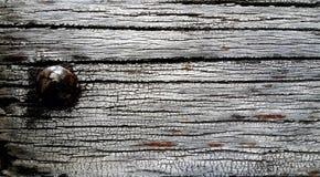 Altes Holz mit rostigem Nagel Stockbilder
