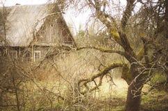 Altes Holzhaus und alter Apfelbaum Stockfotografie