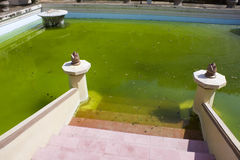 Altes königliches Pool, Yogyakarta, Indonesien Lizenzfreie Stockbilder