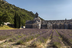 Altes Kloster Abbaye Notre-Dame de Senanque (Abtei von Senan Stockfotografie