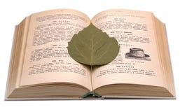 Altes Kochbuch und trockenes Blatt Lizenzfreie Stockfotos