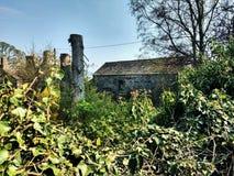Altes l?ndliches Bauernhaus mit Weinlesefotoart stockbilder