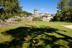Altes Maya-piramide, Palenque, Mexiko Stockbilder