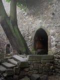 Altes mittelalterliches Schloss in einem Nebel stockbild