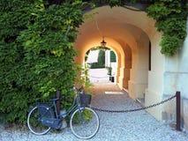 Altes Mode bycicle Mageres againt eine geblühte Wand mit grünem Efeu, nahe einem Tunnelportal lizenzfreie stockbilder
