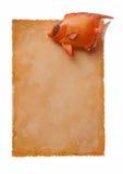Altes Paper-12 Lizenzfreies Stockfoto