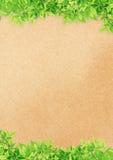 Altes Papier auf grünen Blättern Stockbild