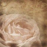 Altes Papier mit Blumenmuster stockbild