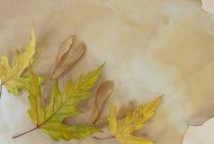 Altes Papier mit trockenen Herbstblättern Lizenzfreies Stockbild