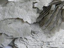 Altes Papier vollständig gebrannt Stockfotos