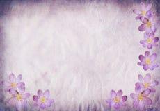 Altes Papierhintergrundblau mit Blumenelementen lizenzfreie abbildung
