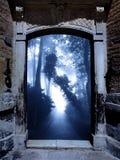 Altes Portal im nebeligen Wald Lizenzfreie Stockfotografie