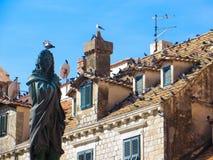 Altes Quadrat in Dubrovnik - voll von den peagons lizenzfreies stockfoto