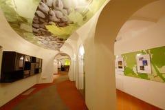Altes Rebe-Haus ein geliehen in Maribor Stockfotos