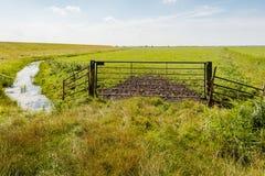 Altes rostiges Tor vor einer Wiese Lizenzfreies Stockfoto