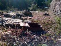 Altes rostiges Zinn im Wald stockfoto
