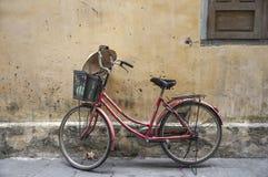 Altes rotes Retro- Fahrrad Lizenzfreie Stockfotografie