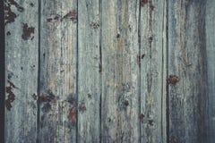 Altes rustikales Holz mit Form oder pilzartig auf Spitzenhintergrundbeschaffenheit stockbilder