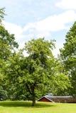 Altes schönes Holz Lizenzfreie Stockfotos