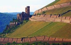 Altes Schloss auf Weinberg lizenzfreie stockbilder