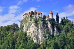 Altes Schloss, in geblutet lizenzfreie stockfotografie