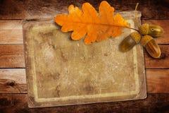 Altes Schmutzpapier mit Herbsteiche verlässt und Eicheln stockbilder