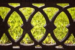 Altes Schwarzes warf Zaun auf einem grünen Rasenhintergrund Lizenzfreie Stockfotografie